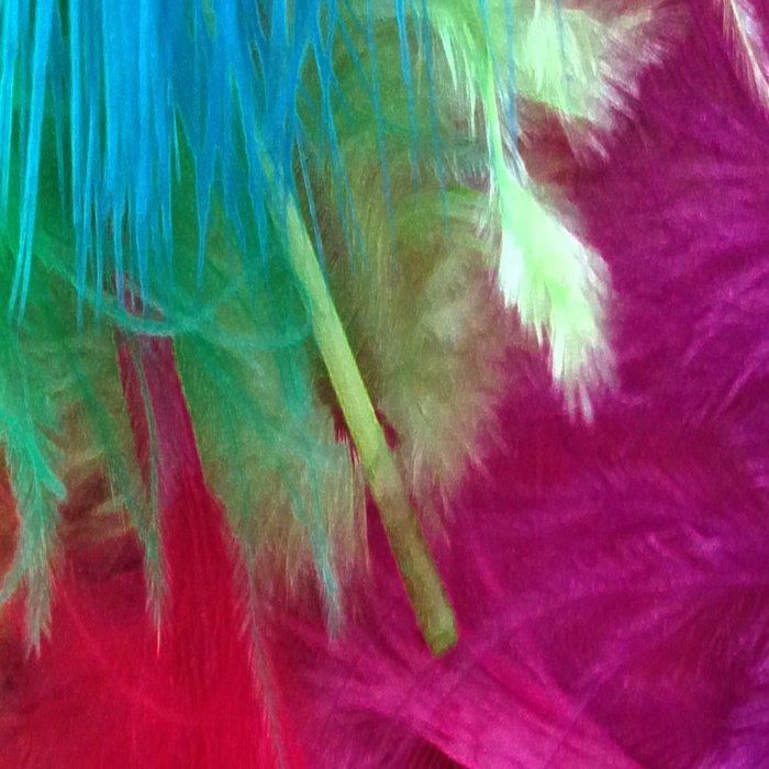 Flamboyant Feathers Leggings