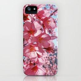 Sakura in the sun iPhone Case