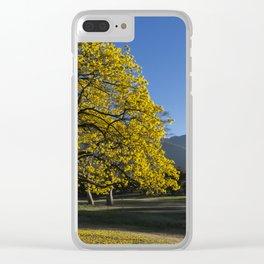 Araguaney y Ávila Clear iPhone Case