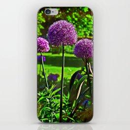 Purple Allium Spheres iPhone Skin