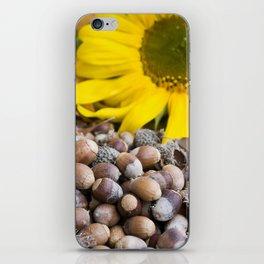 Autumn Acorns 8 iPhone Skin