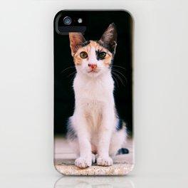 Little stray kitten iPhone Case