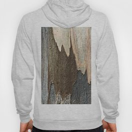 Eucalyptus Tree Bark and Wood Abstract Natural Texture 31 Hoody