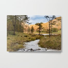 Lake District landscape Metal Print