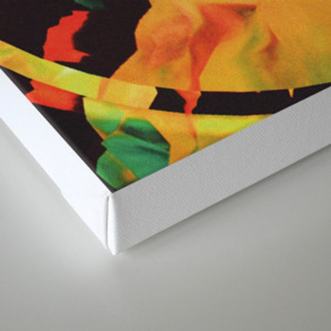 ANDRØMEDAE Canvas Print
