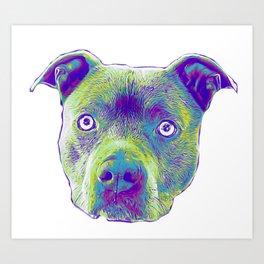 Blue Pitbull dog Art Print