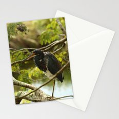 Tricolored At Rest Stationery Cards