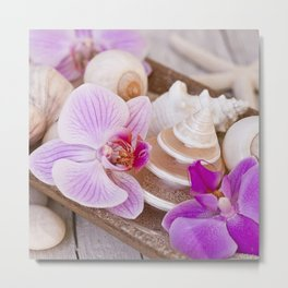 Pink Orchid and Sea Shell Maritime Still Life Metal Print
