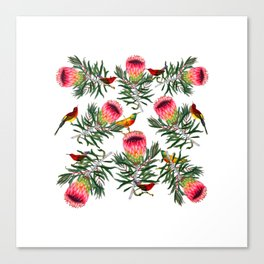 Protea Sunbird Canvas Print