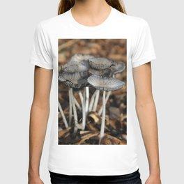 Mushrooms in Color T-shirt