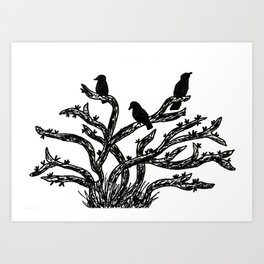 Crowing Art Print