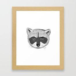 Raccoon Head Front Drawing Framed Art Print