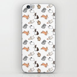 bunnies iPhone Skin