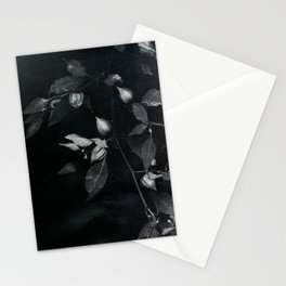 redemption jungle Stationery Cards