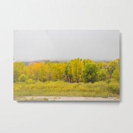 Theodore Roosevelt National Park North Unit, North Dakota 10 Metal Print