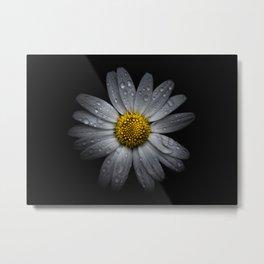 Backyard Flowers 16 Color Version Metal Print
