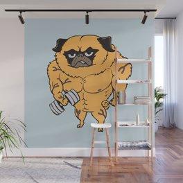 Buff Pug Wall Mural