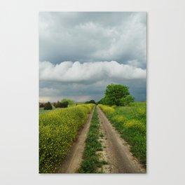 Navarro County, Texas #2 Canvas Print