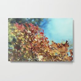 Fall Foliage #4 Metal Print