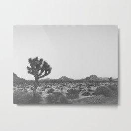 JOSHUA TREE V Metal Print