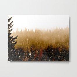 Warm Pines Metal Print