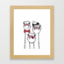 Ostrich family Framed Art Print