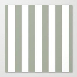 Desert Sage Grey Green Circus Tent Stripe Canvas Print