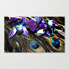 Peacock Perfection Canvas Print
