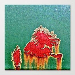 R13 Canvas Print