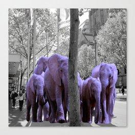 Purple guests Canvas Print