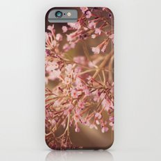 Sweetest Dreams iPhone 6s Slim Case