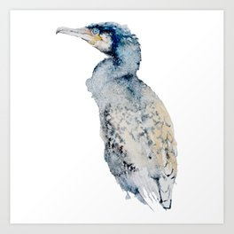 Watercolor Cormorant Painting Art Print