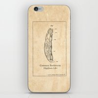 bookworm iPhone & iPod Skins featuring BOOKWORM by Lestaret
