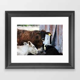 Gossips, the lot of them! Framed Art Print