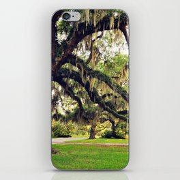 Live Oak Tree with Spanish Moss iPhone Skin