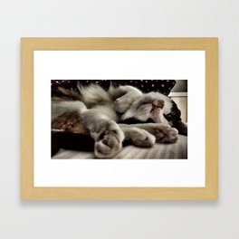 Cat get up right meow Framed Art Print
