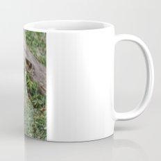 Panda Likes Mug