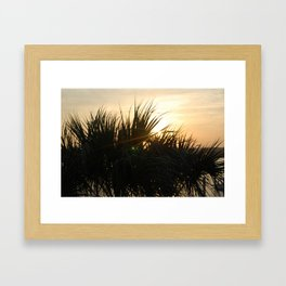 Low Country Sunset Framed Art Print