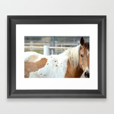 mixture Framed Art Print