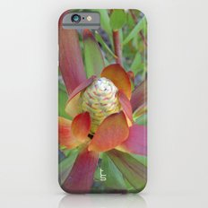 Succulent I iPhone 6s Slim Case