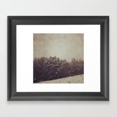 Winter Drift Framed Art Print