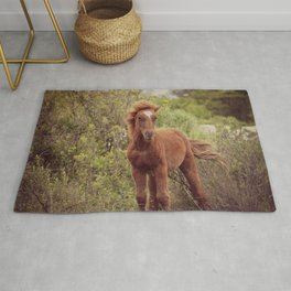 If God made anything more beautiful... Rug