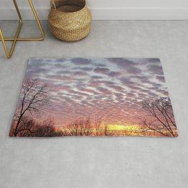 Winter sunset panorama - Hoyt Park, Madison, WI Rug