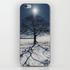 Winter Shadows iPhone & iPod Skin