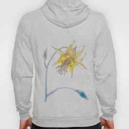 Columbine Watercolor Hoody