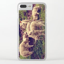 Lambs Clear iPhone Case