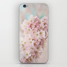 pastel beauty- In memory of Makenzie iPhone & iPod Skin
