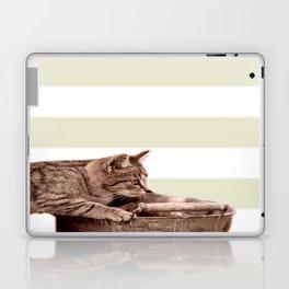 Cat Play on stripes Laptop & iPad Skin