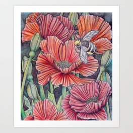 Bee with Poppies Art Print