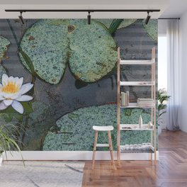 Waterlily Wall Mural